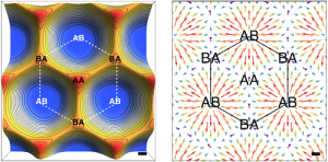 Distribución de la energía de adhesión en una monocapa de grafeno sobre un cristal de nitruro de boro hexagonal (izquierda), que se relaja mecánicamente como respuesta a un patrón de Moiré entre los dos cristales, dando lugar a distorsiones elásticas (derecha). Angel Gutierrez-Rubio. ICMM-CSIC.