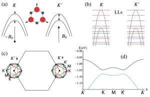 (a) Deformaciones de cizalladura con simetría trigonal simulan el efecto de un campo magnético uniforme sobre los electrones del material con signo opuesto para cada valle K, K'. (b) El espectro debido a estos pseudo-campos magnéticos se organiza en niveles de Landau con quiralidad opuesta para cada sabor de espín, lo que constituye una realización del modelo de Bernevig y Zhang del efecto Hall de espín. (c) Potenciales de super-red hibridizan ternas de puntos en las isoenergías de las bandas en torno a los valles, abriendo gaps (d) topológicamente no triviales. Héctor Ochoa. ICMM-CSIC