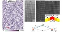 El panel de la izquierda muestra un mapa de corriente obtenido a V = -1.4V, de la superficie de una lámina epitaxial de LSMO. El mapa muestra el aumento de corriente (contraste oscuro) a lo largo de las paredes de macla paralelas a las direcciones cristalográficas [100] y [010]. Las imágenes de microscopía electrónica muestran la pared de macla, tal como se indica mediante flechas verticales. La imagen de la izquierda es una imagen HAADF cuyo contraste es proporcional al número atómico, e indica la ausencia de alteraciones significativas del orden químico. Los siguiente paneles corresponden a la misma imagen de contraste de fase (HRTEM). El primero está comprimido lateralmente, enfatizando así la distorsión de la estructura en la vecindad de la pared. El segundo (extremo derecho), muestra la imagen sin distorsionar, utilizada para la determinación del tensor de la deformación bidimensional correspondiente mediante el análisis de la fase geométrica (GPA). El esquema insertado en esta imagen muestra el estado de la deformación deducido del análisis. El esquema inferior muestra las distorsiones δd y δΘ que determinan el grado de solapamiento orbital Mn 3d - O 2p. Felip Sandiumenge, ICMAB-CSIC.