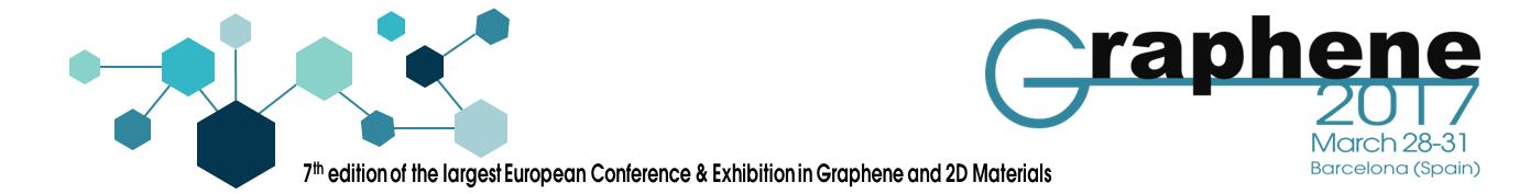 Graphene2017_Banner (1)